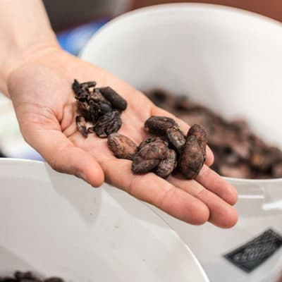 Michel Cluizel, la manufacture du goût : visite de la chocolaterie à Damville