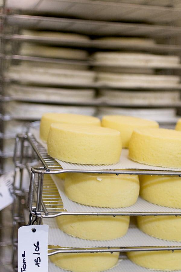 Brie de Meaux et Melun AOP : Ferme des Trente Arpents et processus de fabrication