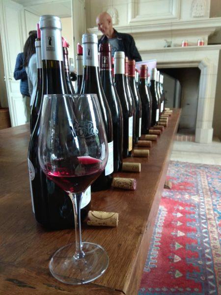 Saint-Nicolas de Bourgueil : vins fruités et légers au bord de la Loire